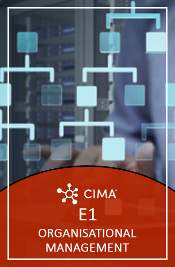 CIMA E1 Exam Questions - Organisational Management